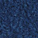 Cushion Fall Blue
