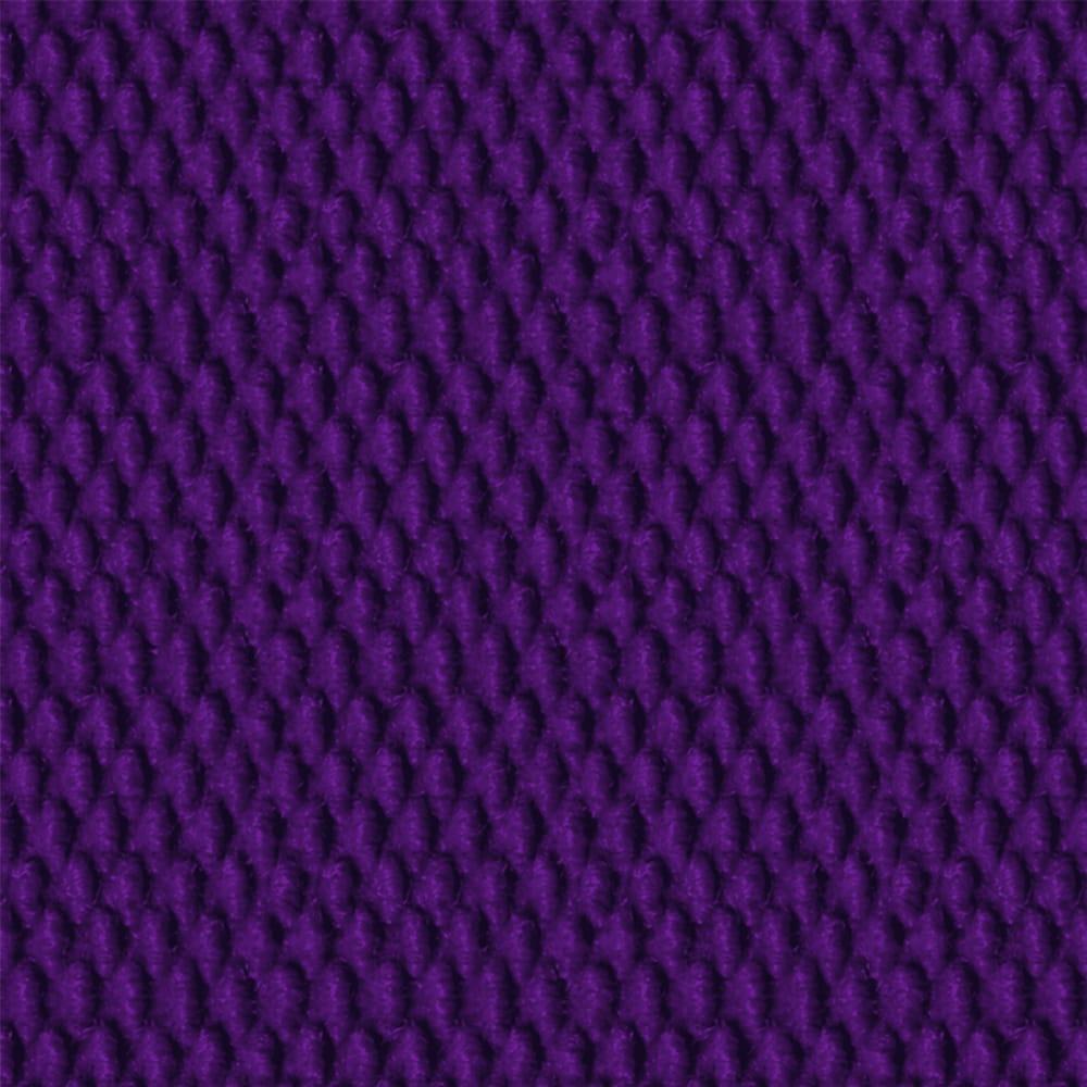Spectra Clean Logomat Purple